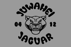 jaguar-fahne
